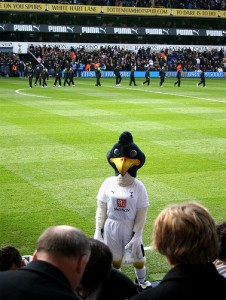Evil Chirpy looks menacingly into the crowd at White Hart Lane.